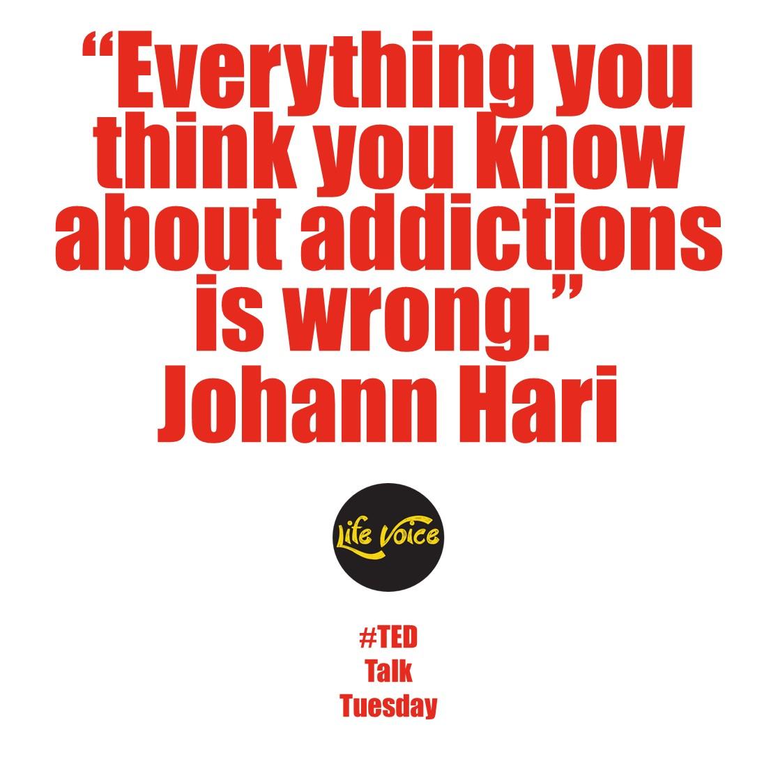 Johann Hari – Life Voice